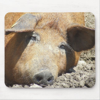 """Sleeping Pig"" Mousepad"