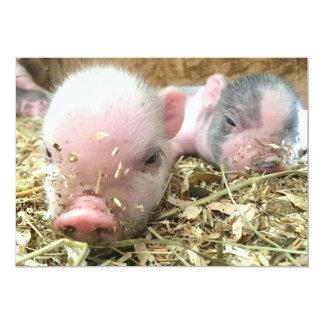 Sleeping Piglets Invitations