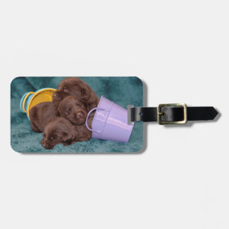 Sleeping Pile of Puppies Luggage Tag