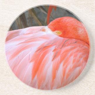 Sleeping Pink Flamingo Drink Coaster