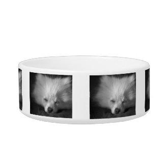 Sleeping Pomeranian Puppy Cat Bowl