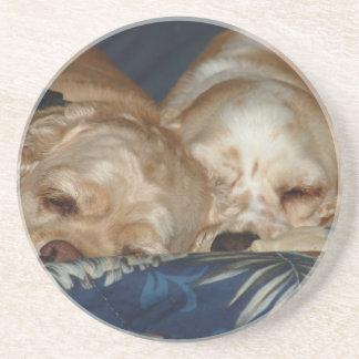 Sleeping Puppies Beverage Coasters