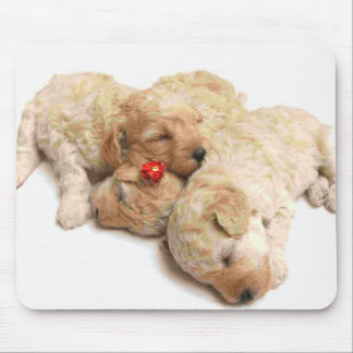 Sleeping Puppies Mouse Pad