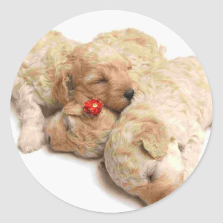 Sleeping Puppies Round Sticker
