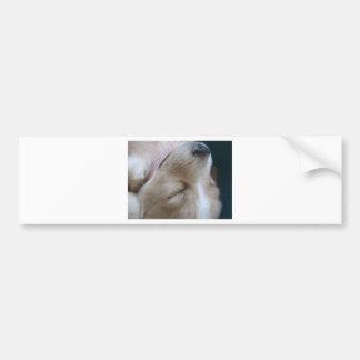 Sleeping puppy bumper sticker