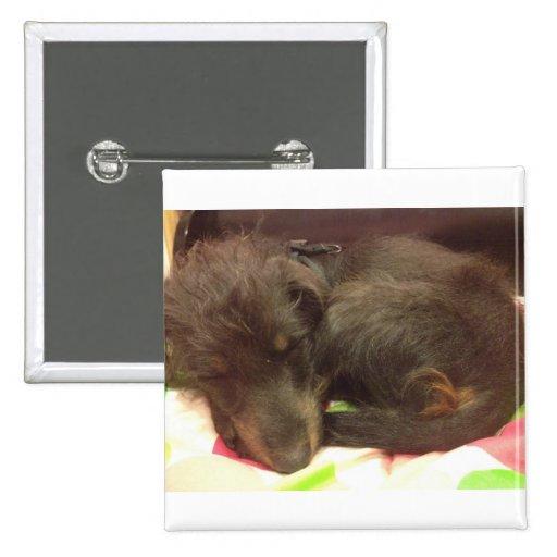 Sleeping Puppy Button