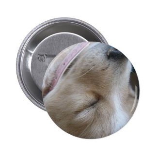 Sleeping puppy buttons