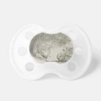 Sleeping puppy by Rembrandt Pacifiers