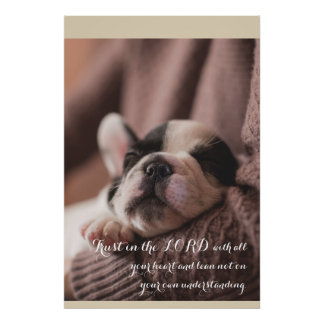 Sleeping puppy, christian poster