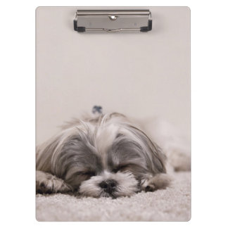 Sleeping Puppy Clipboard