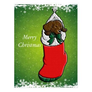 Sleeping Puppy in Christmas Stocking Postcard