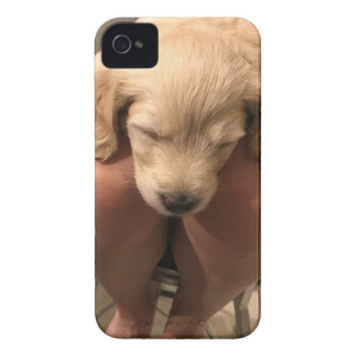 Sleeping Puppy iPhone 4 Case-Mate Case