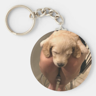 Sleeping Puppy Key Ring
