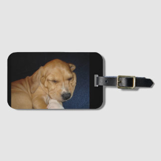 Sleeping puppy luggage tag
