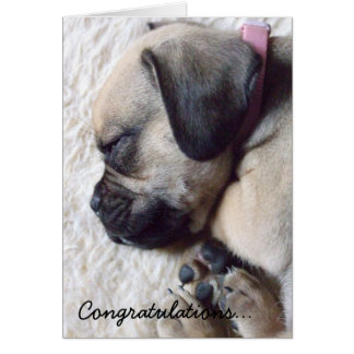 Sleeping Puppy New Puppy Greeting Card