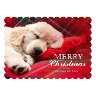 Sleeping Puppy On Plaid 13 Cm X 18 Cm Invitation Card