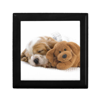 Sleeping Puppy Small Square Gift Box