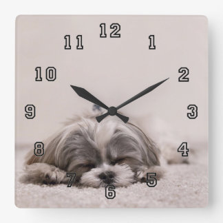 Sleeping Puppy Square Wall Clock