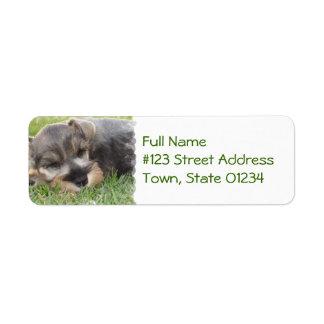 Sleeping Schnauzer Dog Mailing Label Return Address Label