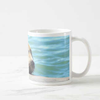 SLEEPING SEA LION COFFEE MUG