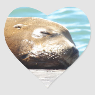 SLEEPING SEA LION HEART STICKER