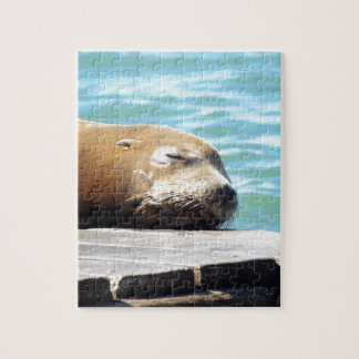 SLEEPING SEA LION JIGSAW PUZZLE