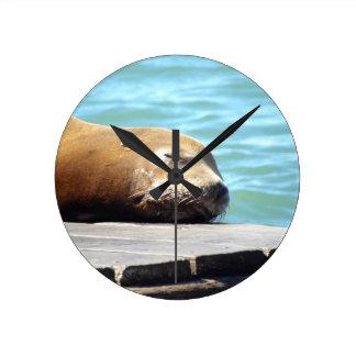 SLEEPING SEA LION ROUND CLOCK