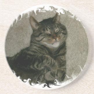 Sleeping Tabby Kitty Cat Coaster