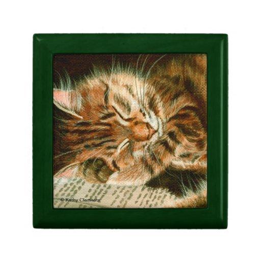 Sleeping tabby kitty cat giftbox trinket boxes