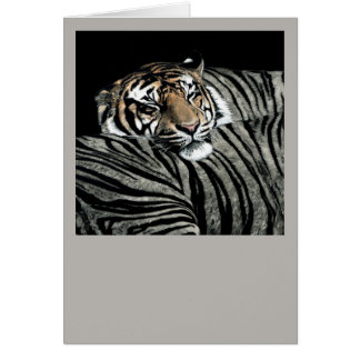 Sleeping Tiger Card