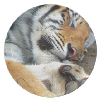 Sleeping Tiger Plate