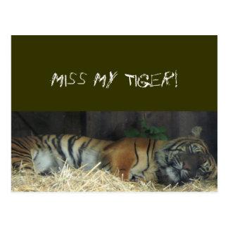 Sleeping Tiger? Postcard