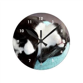 sleeping tuxedo cat chin view kitty image clock