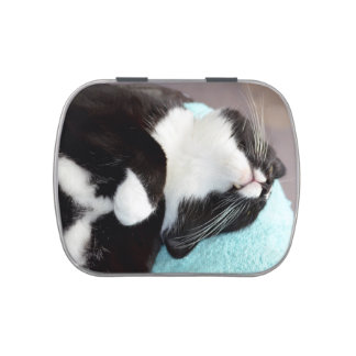 sleeping tuxedo cat chin view kitty image jelly belly tins