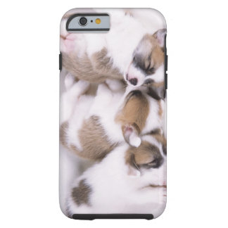 Sleeping welsh corgi puppies tough iPhone 6 case