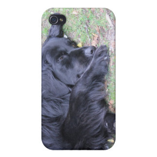 Sleeping with one eye open cover for iPhone 4