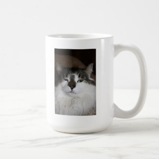 Sleepy and beautiful cat photo basic white mug