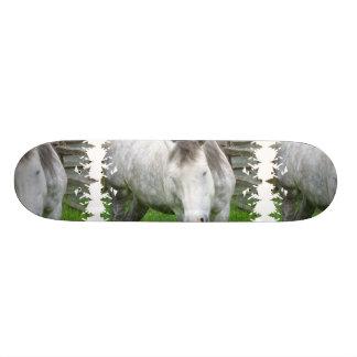 Sleepy Appaloosa Skateboard