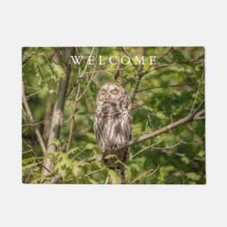 Sleepy Barred Owl Doormat