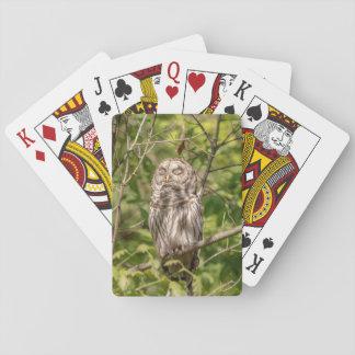 Sleepy Barred Owl Playing Cards