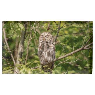 Sleepy Barred Owl Table Number Holder