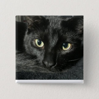 "Sleepy cat 2"" square pin"