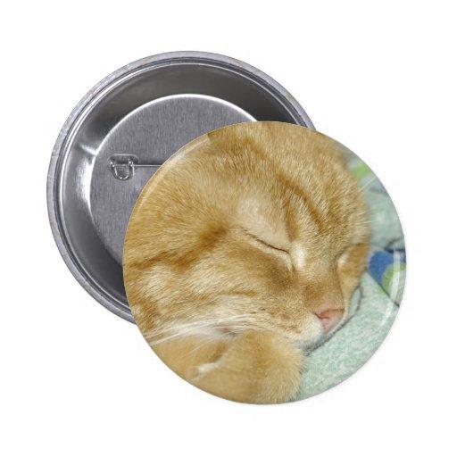 Sleepy cat pinback button