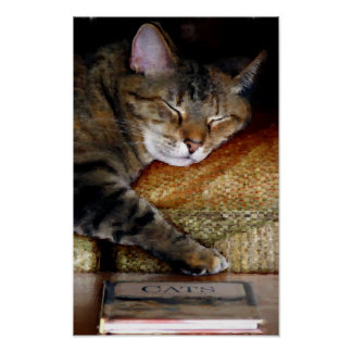 Sleepy Cat Book Painting Poster
