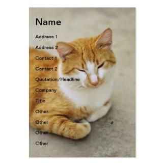 Sleepy cat business cards