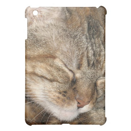 Sleepy Cat Cover For The iPad Mini