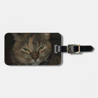 Sleepy Cat Luggage Tag