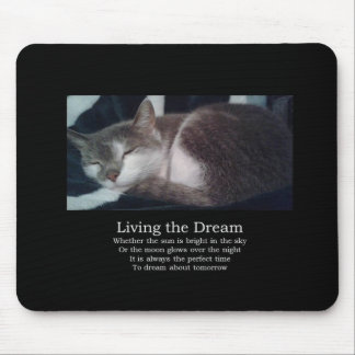 Sleepy cat mouse pad