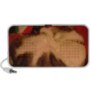 Sleepy cat mp3 speakers