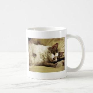 Sleepy Cat Mug